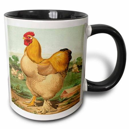 3dRose Vintage Buff Cochin Cock Samson, Winner of Birmingham Cup 1861 - Two Tone Black Mug, 11-ounce