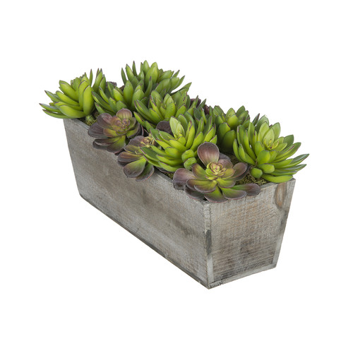 House of Silk Flowers Inc. Artificial Succulent Garden Desk Top Plant in Decorative Vase