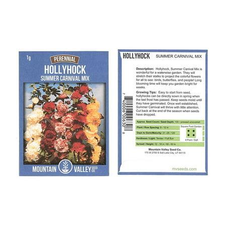 Summer Carnival Mix Hollyhock Flower Garden Seeds - 1 Gram Packet - Perennial Holly Hock Flower Gardening