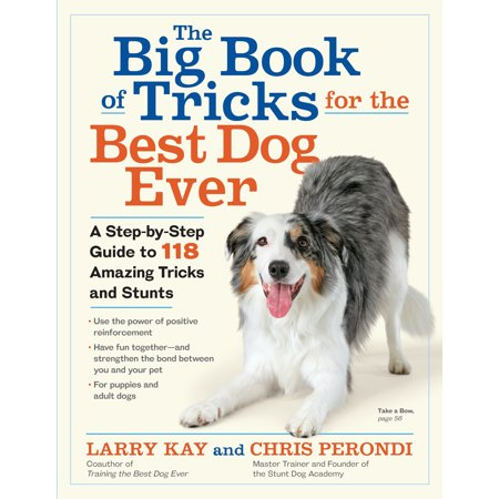 Big Book of Tricks for the Best Dog Ever -
