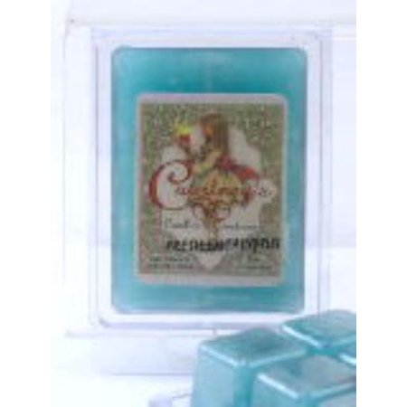 Fresh Eucalyptus Mixer Melt Or Wax Tart By Courtneys Candles