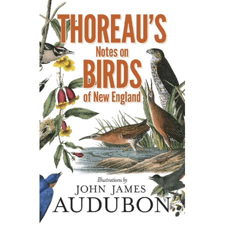 Thoreau's Notes on Birds of New England (Birds New England)