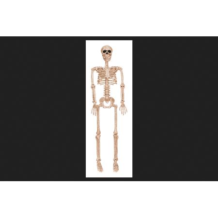 Seasons Poseable Skeleton Halloween Decoration Bone 36 in. H x 4 in. W x 9-1/2 in. L
