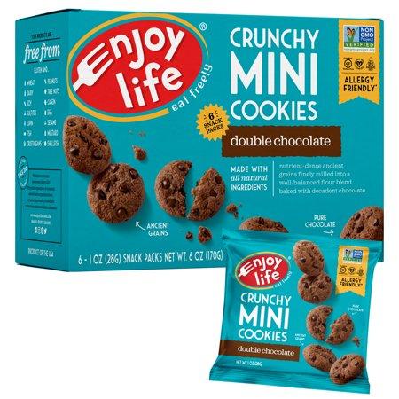 Foods Gluten Free Chocolate - Enjoy Life Foods Gluten Free, Allergy Friendly Crunchy Double Chocolate Mini Cookies