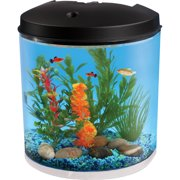 "Hawkeye 3.5 Gallon 180 View with LED Lighting and Filter, 12""L x 8.75""W x 13.75""H"