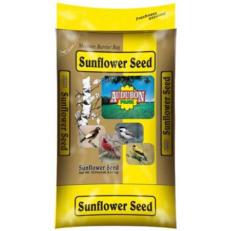 Audubon 12263 10 Lb Sunflower Seed Wild Bird Food
