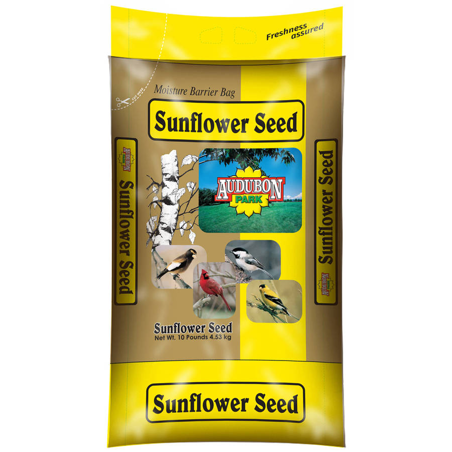 Audubon 12263 10 Lb Sunflower Seed Wild Bird Food