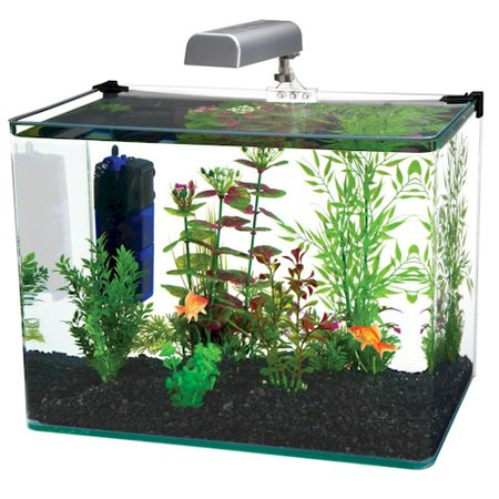 "The Radius 5 Gallon Aquarium Features a Unique ""Bent Glass"" Frameless Design.Includes LED Light"