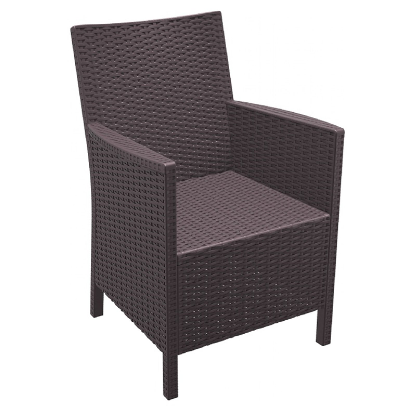 Compamia California Resin Wicker Chair Set of 2 by Compamia