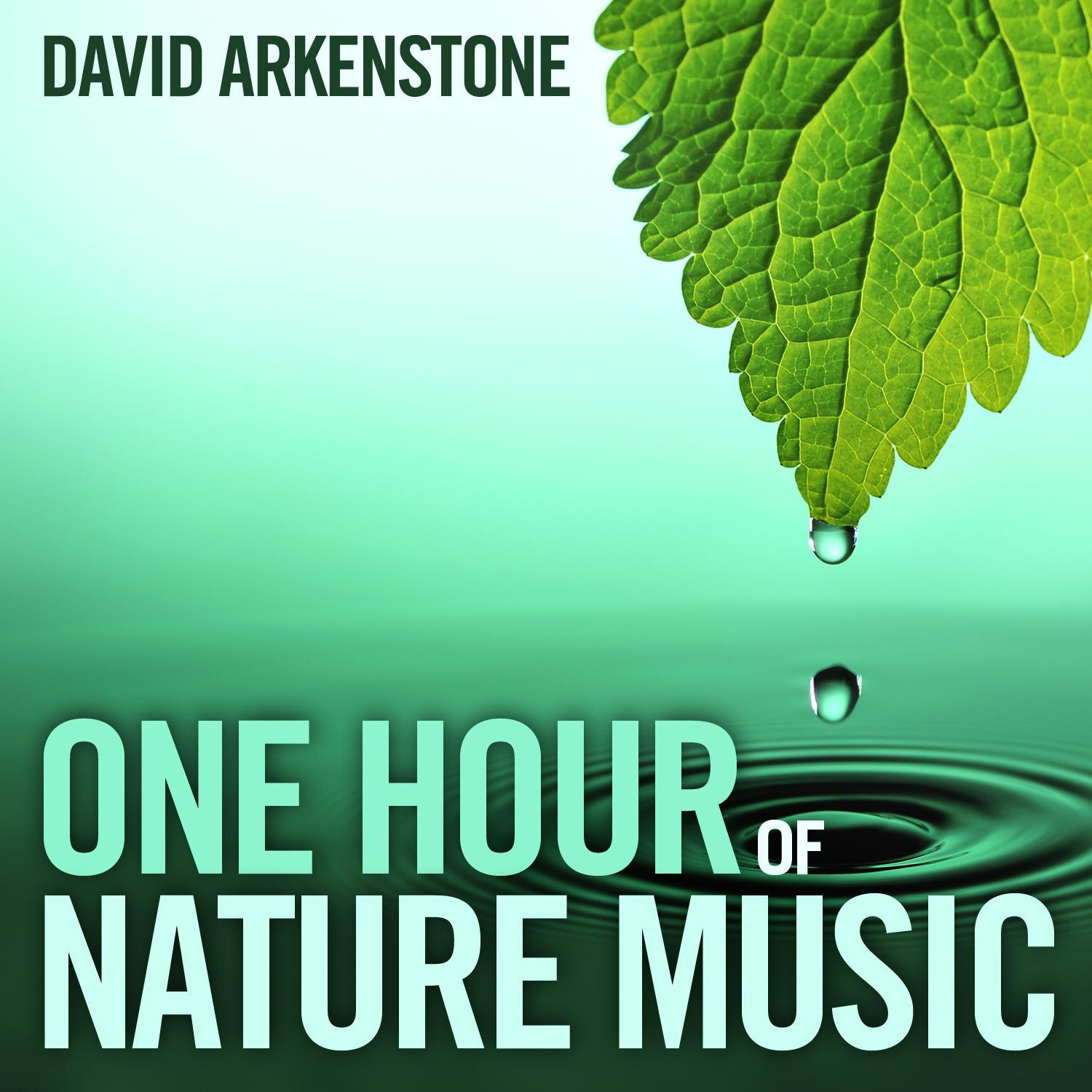 Natural Wonders Collections: One Hour of Nature Music (Audiobook)