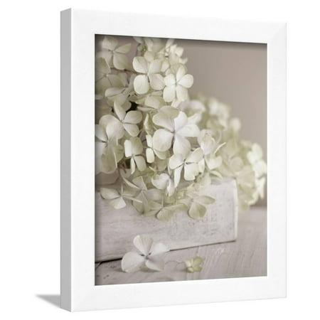 Flowers Framed Art - White Flowers Framed Print Wall Art By Symposium Design