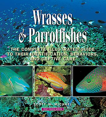 Wrasses & Parrotfishes