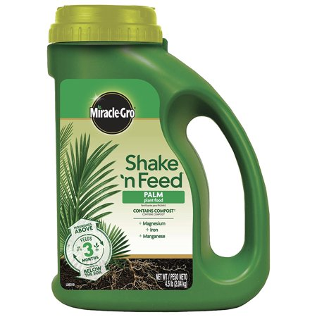 - Miracle-Gro 3002910 Shake 'N Feed Continuous Release Palm Plant Food, Contains magnesium, iron and manganese to grow lush palms, cyads and tropical plants By MiracleGro