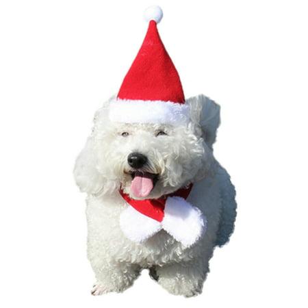 d6c912e5b Legendog Christmas Pet Hat Cute Adjustable Pet Santa Hat Christmas ...
