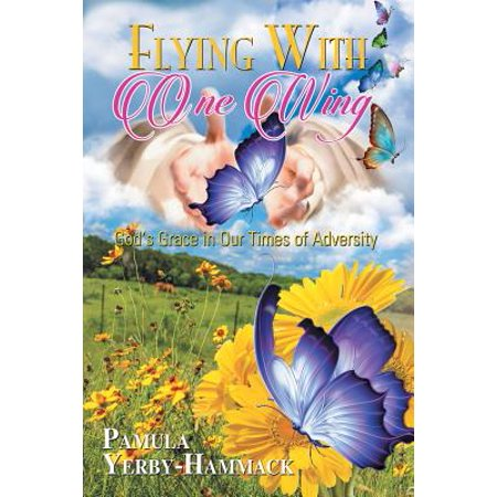 Foam Flying Wing (Flying with One Wing : God's Grace in Our Times of Adversity )
