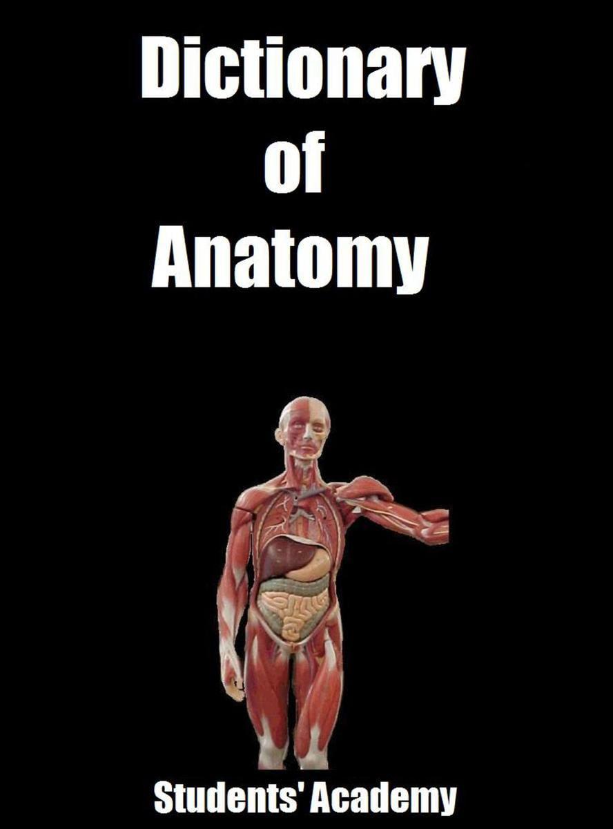 Dictionary Of Anatomy Ebook Walmart