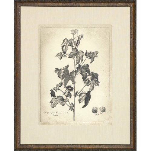 Art Virtuoso Etched Florals Framed Painting Print by Art Virtuoso