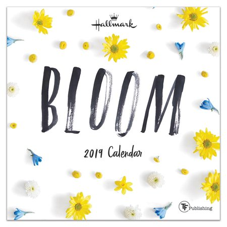 2019 Bloom by Hallmark 7