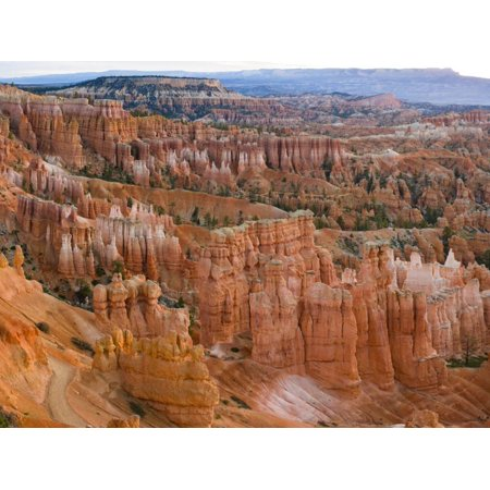 Hoodoo Rock Formations in a Canyon from Sunset Point, Bryce Canyon National Park, Utah, Usa Print Wall Art By Green Light