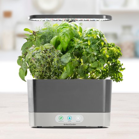 Exclusive AeroGarden Harvest, Grey with Gourmet Herbs Seed