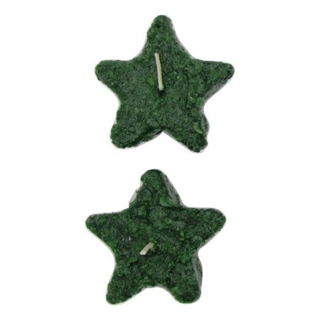 - Star Hollow Candle Company Cinn Stix Floating Candle (Set of 2)