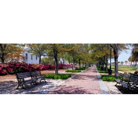 Waterfront Park in Charleston SC Stretched Canvas - Panoramic Images (33 x 12) (33 Und Park)