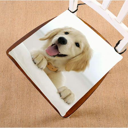 ZKGK Labrador Retriever Seat Pad Seat Cushion Chair Cushion Floor Cushion Two Sides 16x16 Inches