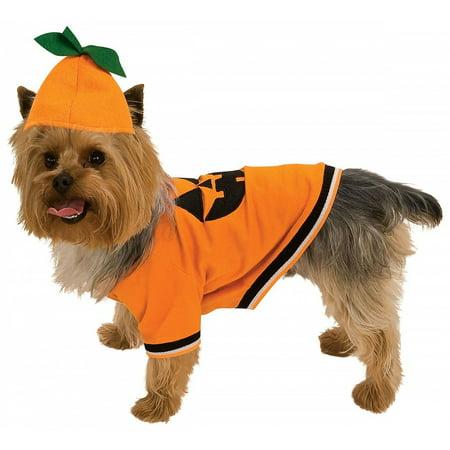 Pumpkin Pet Pet Costume - X-Small