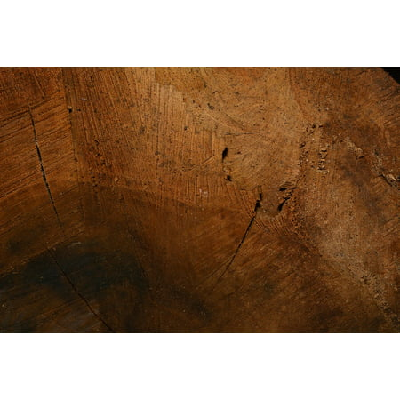 LAMINATED POSTER Wood Fibres Structure Wood Grain Wood Close Poster Print 24 x 36