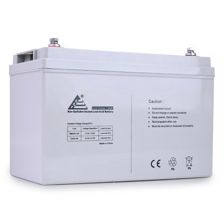 ExpertPower 12V 100Ah Solar Wind Power AGM Sealed Lead Acid (Best Batteries For Solar Power)