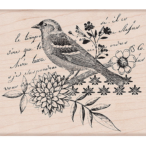Hero Arts Mounted Rubber Stamps 4 Inch X 4 Inch-Bird Collage