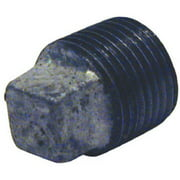 Pannext Fittings G-PLG03 0.38 in. Galvanized Plug