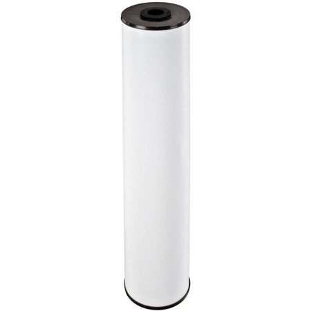 Iron Reduction Filter (Pentek RFFE20-BB Iron Reduction Water Filter (20