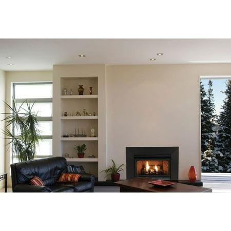Outstanding Vent Free Mv 20000 Btu Fireplace Insert Natural Gas Download Free Architecture Designs Scobabritishbridgeorg