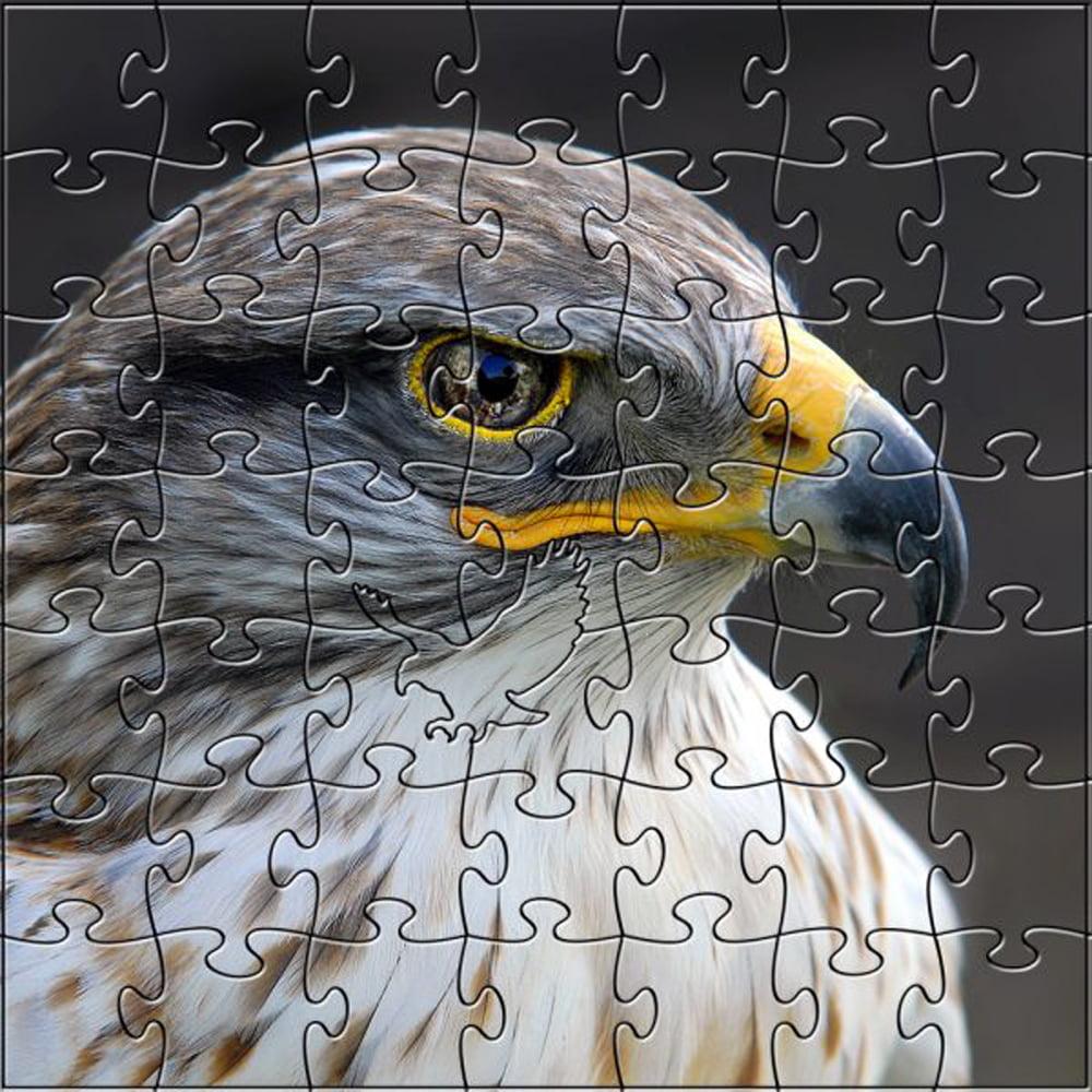 Zen Art & Design Wildlife Photography 299 Piece Eagle Wood Jigsaw Puzzle Medium by Zen Art & Design