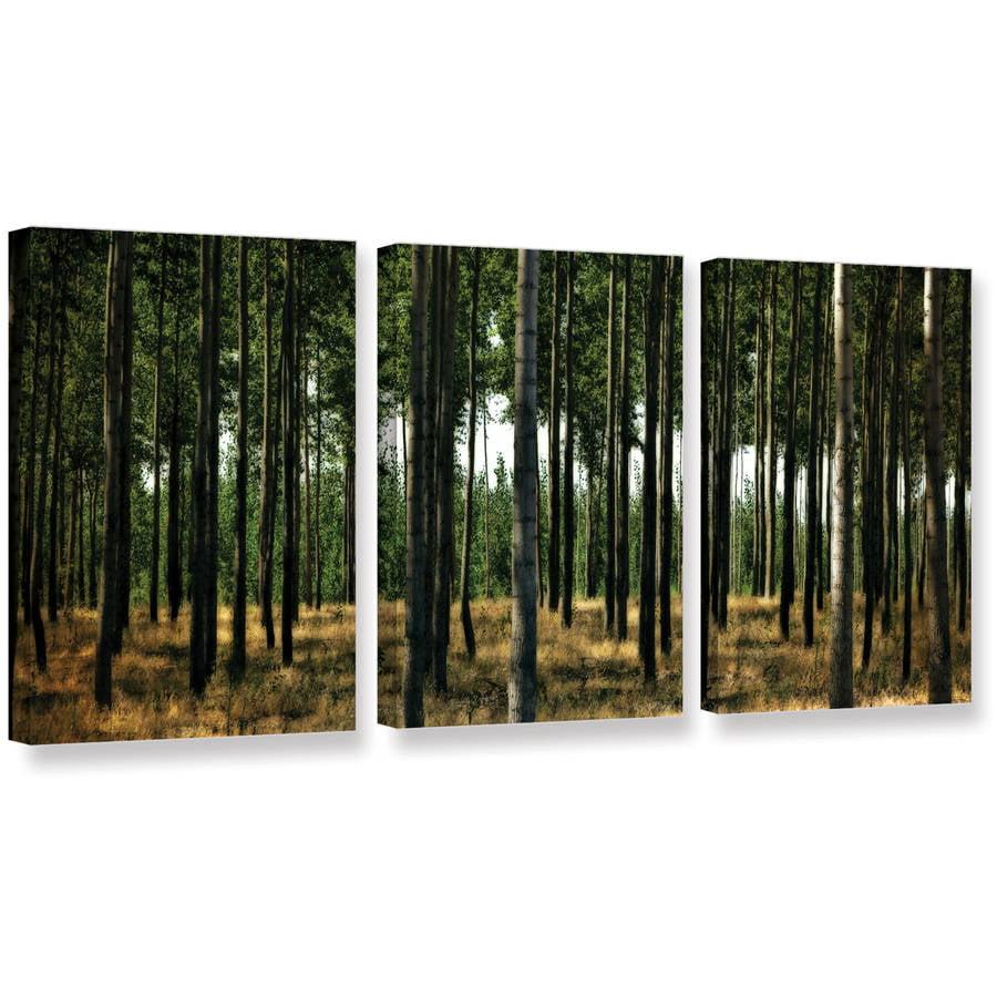 "ArtWall Kevin Calkins ""Standing Trees"" ArtAppealz Removable Wall Art"