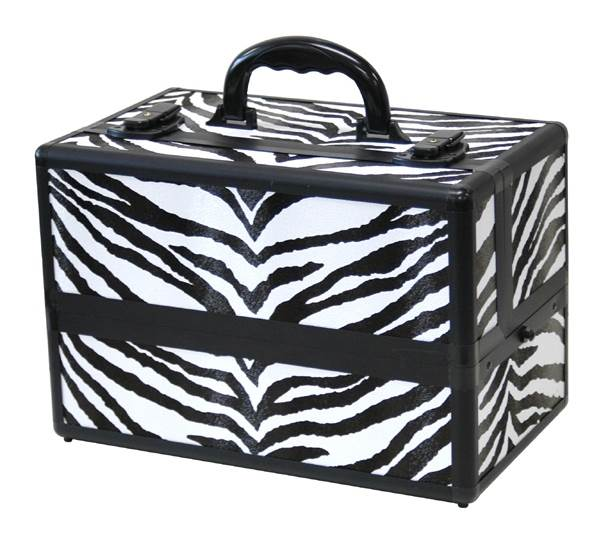 8.5 in. Beauty Case w 6 Compartments