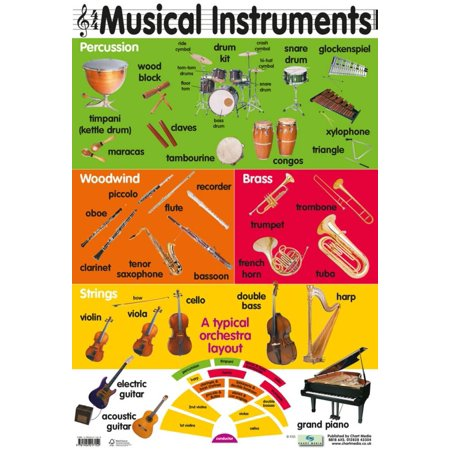 29 Musical Instruments Poster - 16x24 (Instruments Posters)