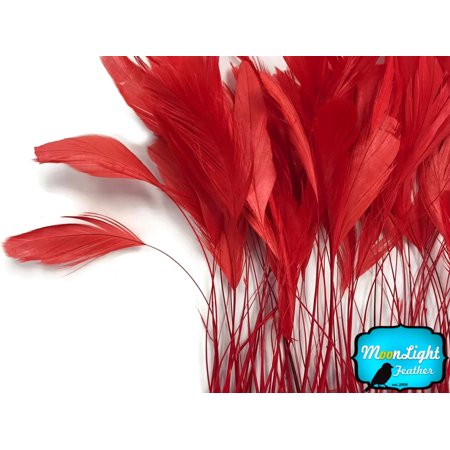 (1 Yard - Red Stripped Coque Tail Feathers Wholesale (Bulk))