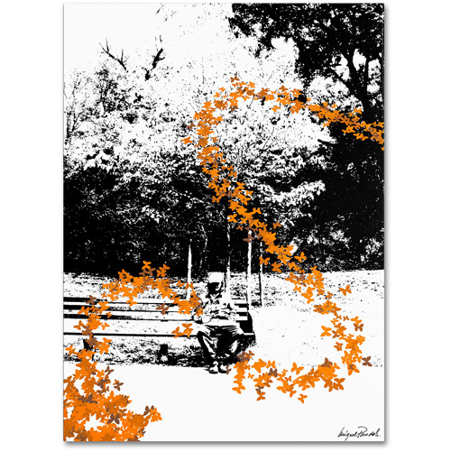 "Trademark Fine Art ""Orange Butterflies"" Canvas Art by Miguel Paredes"