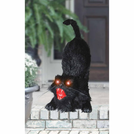 Animated Cat Halloween Prop - Animated Vampire Coffin Halloween Inflatable Prop