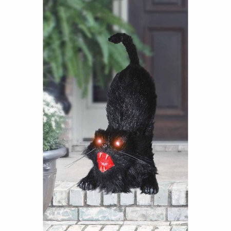 Animated Cat Halloween Prop](Halloween Animated Props Cheap)