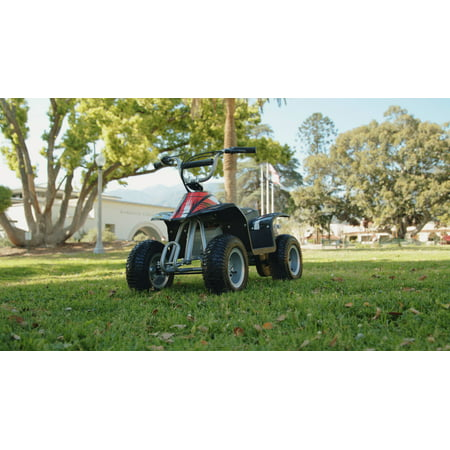 Razor 24-Volt Electric Dirt Quad Ride On - For Ages 8 and Up ...