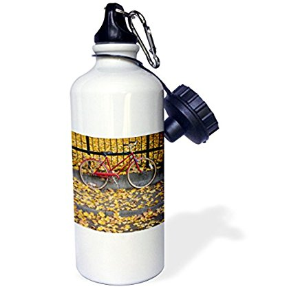 3dRose Bicycle on a fence amidst yellow Autumn leaves - US38 BBR0143 - Brent Bergherm, Sports Water Bottle, 21oz