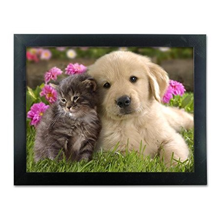 Cute Puppy and Kitten Framed Picture - 3D Holographic Framed