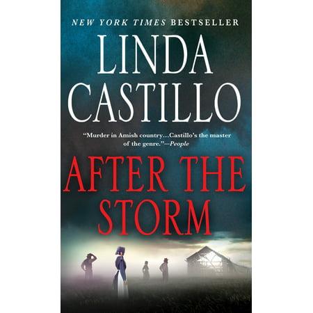 After the Storm : A Kate Burkholder Novel