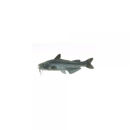 "Blue Catfish By Cabin Critters 17"" H"
