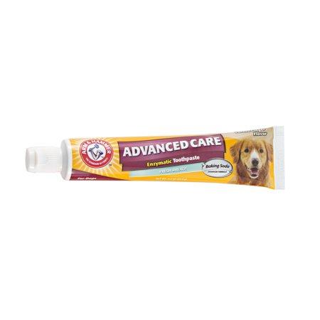 Arm & Hammer™ Fresh Breath Toothpaste in Vanilla Ginger -