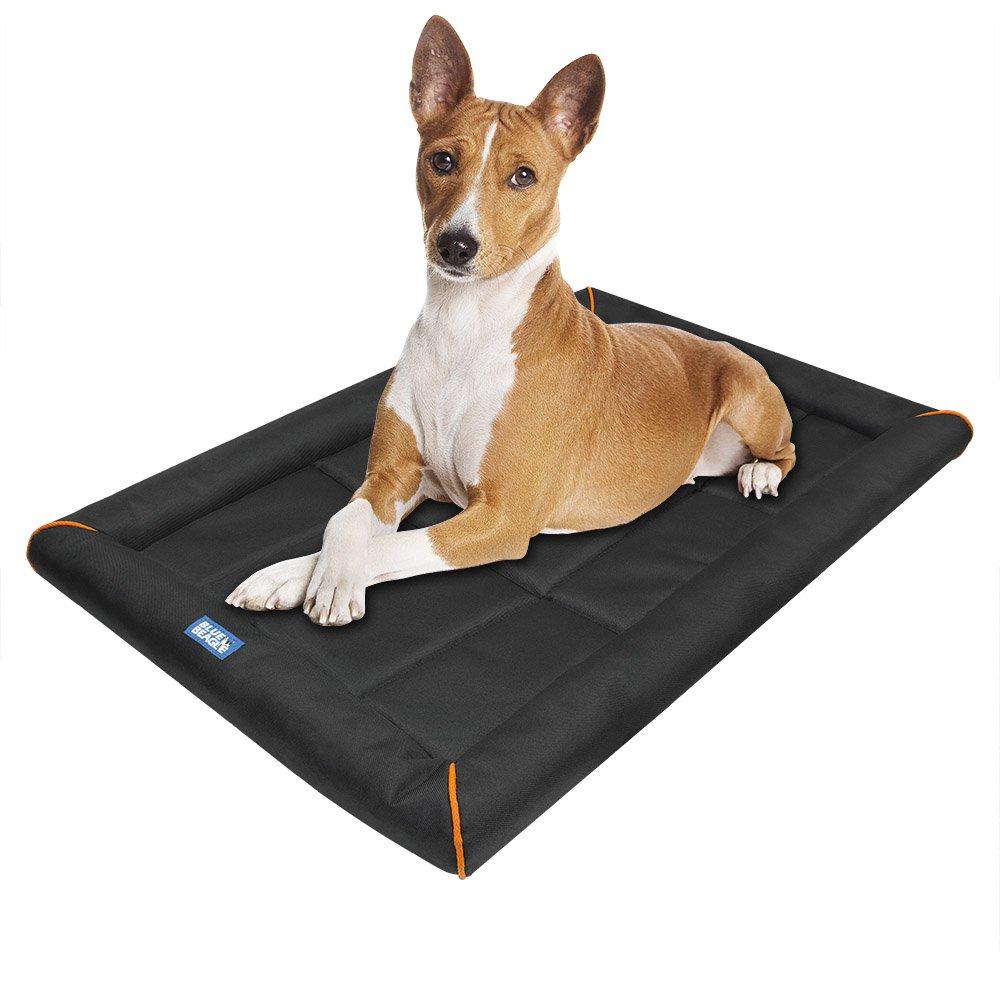 heated dog beds com - Heated Dog Bed