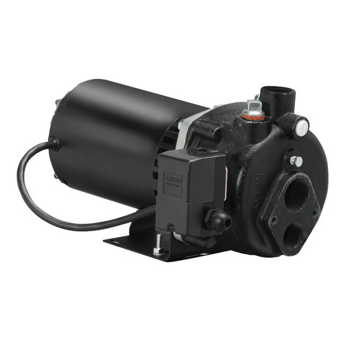 WAYNE 3/4 HP Cast-Iron Convertible Well Jet Pump